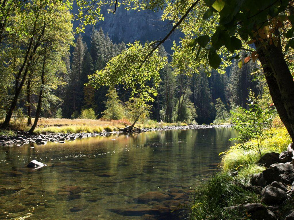 Fishing in Rivers