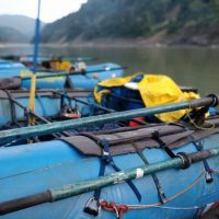 Cataract Oars on the Siang River in the Himalayas